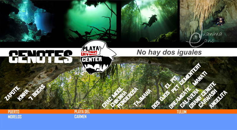 We dive all cenotes!